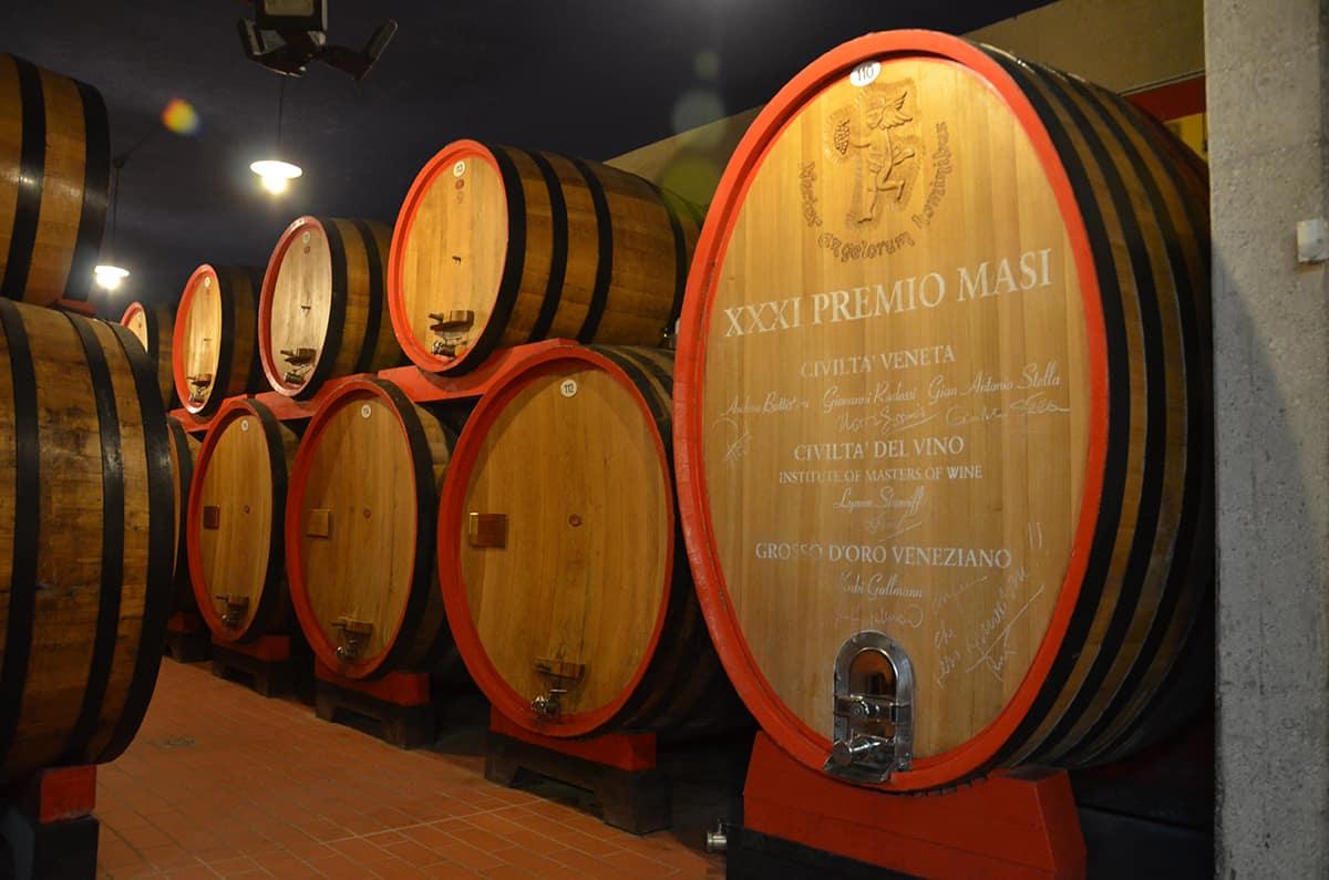 Besök vingård Masi i vinkällare med ekfat